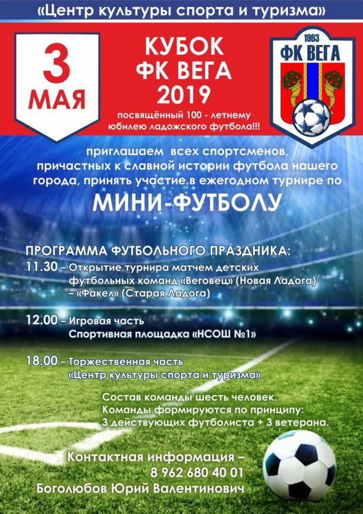 """""""Кубок ФК ВЕГА 2019"""""""