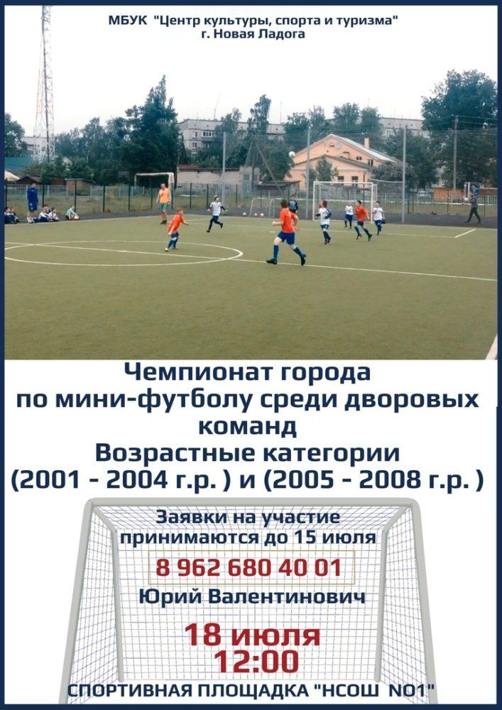 Чемпионат города по мини-футболу среди дворовых команд.